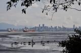 Metro Vancouver 7