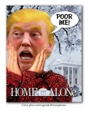 Home Alone Donny