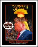 Donny's-Exploding-BrainW.jpg