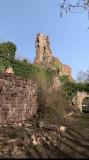 Balade au château du Guirbaden