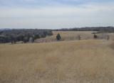 Battlefield at Bull Run