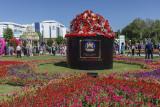 Flower festival, Tashkent, Uzbekistan
