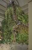 The forest dinosaur