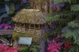 Hut from the Limahuli Garden, Hanalei, HI