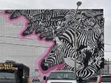 Zebras galore