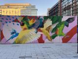 Festive birds