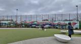 100-foot dragon at the dog park
