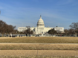 Washington Fenced In