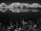 Infrared: A World We Cannot See