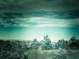 Western Oklahoma In Winter