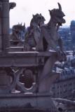 Notre Dame - Fluctua Nec Mergitur