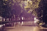 Le canal du Midi, near Toulouse (photo from slide; circa 1987-1997).