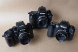 The autofocus bodies: Nikon F4 (left), Nikon F5 and Nikon F100.