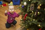 Dorothy attacks the Christmas lights