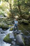 Dicey stream crossing