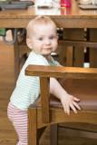 Chair climber extraordinaire