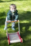 Backyard walker