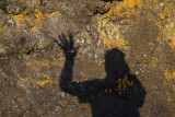 I'm just a shadow of myself