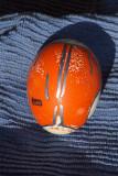 Patagonia jacket egg