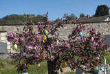 Easter hope in the cemetery