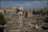 From Palatine Hill...