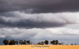 More big skies over the wheat fields