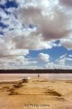 Remains of the saltworks jetty, Lake Kenyon, Pink Lakes