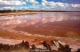 Lake Kenyon, Pink Lakes.