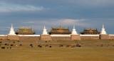 Livestock graze outside the walls of Erdene Zuu Khiid, Kharkorin, Mongolia