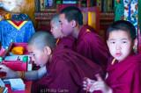 Prayer time for novice Buddhist monks