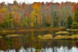 NY - Adirondacks Fall Pond 1.jpg