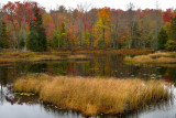NY - Adirondacks Fall Pond 2.jpg