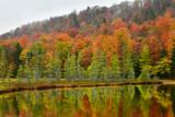 NY - Adirondacks Fall Pond 3.jpg