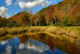 NY - Adirondacks Fall Pond 4.jpg