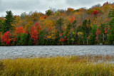 NY - Adirondacks Horseshoe Lake.jpg