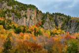 NY - Adirondacks Rock Face Fall Colors 2.jpg