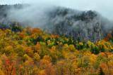 NY - Adirondacks Rock Face Fall Colors 3.jpg