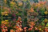 NY - Adirondacks Seventh Lake 1.jpg