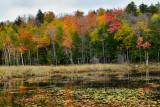 NY - Adirondacks Tupper Lake.jpg