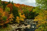 NY - Adirondacks West Ausable River 1.jpg