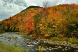 NY - Adirondacks West Ausable River 3.jpg