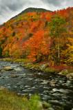 NY - Adirondacks West Ausable River 4.jpg