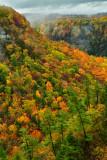 NY - Letchworth SP Fall Canyon 7.jpg
