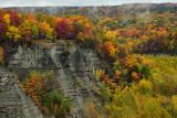 NY - Letchworth SP Fall Canyon 15.jpg