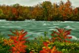 NY - Niagara Falls Niagara River 8.jpg