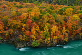NY - Whirlpool SP Niagara Gorge 2.jpg