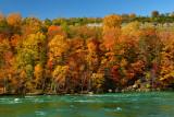 NY - Whirlpool SP Niagara Gorge 5.jpg