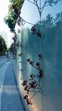 Plants Growing through glass fence a Salesforce Park