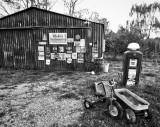 America's Rural South