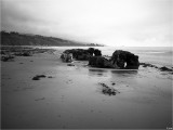 Low Tide Rocks and Seaweed